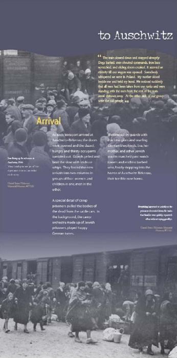 Auschwitz: The Eva Brewster Story 12