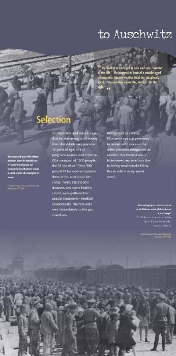 Auschwitz: The Eva Brewster Story 13