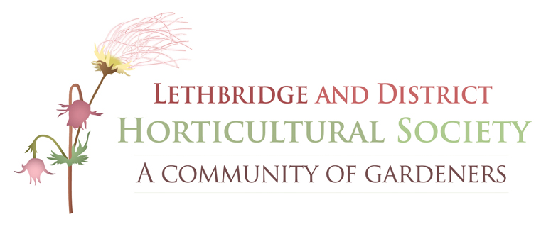 one match fire design & communications_LDHS Logo - full